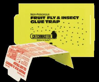 Fruit Fly Glue Board 100FF