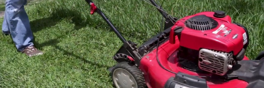Best Herbicide Products to Get Rid of Virginia Buttonweed