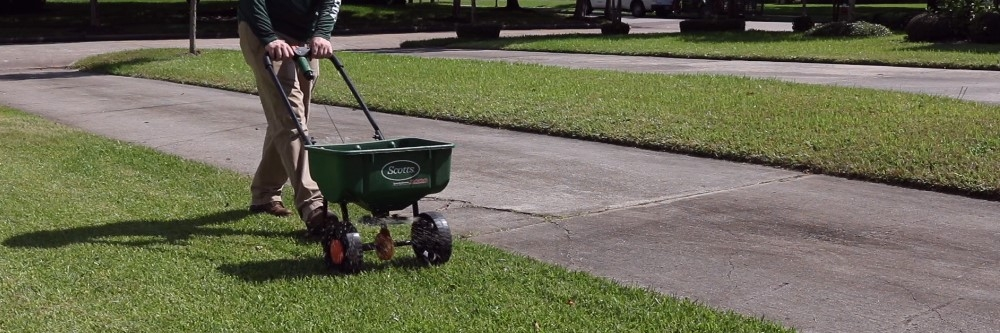 Best Herbicide Products For Getting Rid of Goosegrass